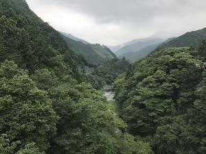 プチ山岳ツアー?