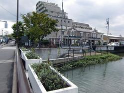 花畑運河とクロス