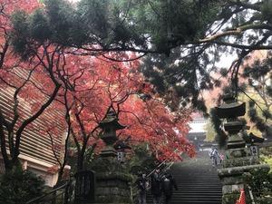 最乗寺瑠璃門