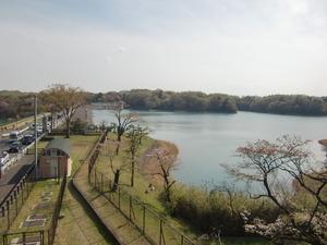 多摩湖(上村山ダム)