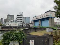 大島川水門再び