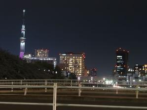 猿江公園夜桜7