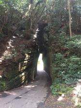 切通しのトンネル