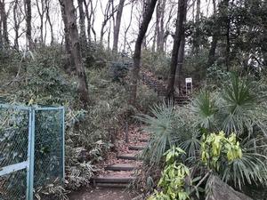 赤塚城北斜面