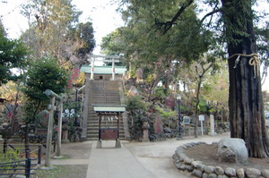 富士神社古墳後円部