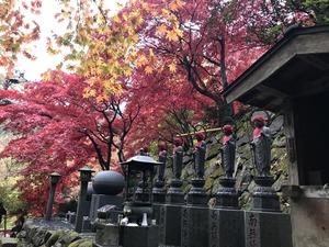 大山寺女坂