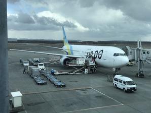 北海道の翼