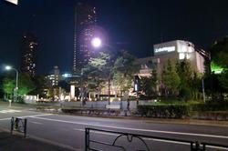 ティアラとガーデンタワー