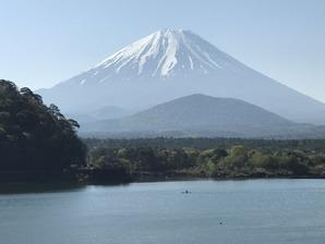 精進湖から望む富士