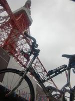towerとkoinobori