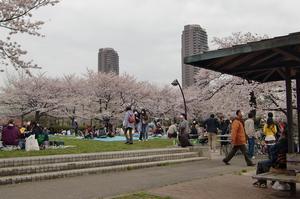 猿江公園とガーデンタワー