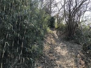 10後円部への道