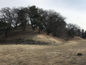 5七輿山前方部より全景