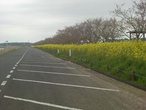安塚公園駐車場
