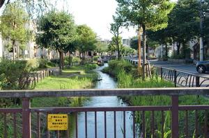 曳舟川の親水公園