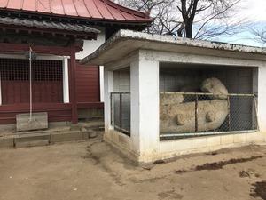 23後円部頂上石棺