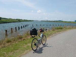 防砂林と河口部を縫って走る自転車道