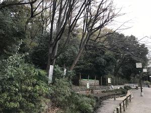 志村城北側