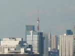東京タワー遠望