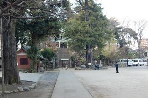 富士神社古墳全景