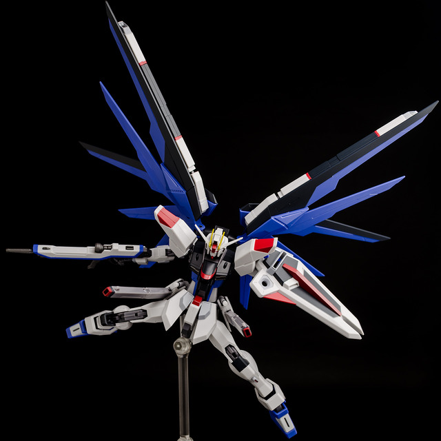 RT_Freedom Gundam-0166
