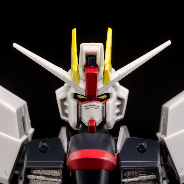 RT_Freedom Gundam-3