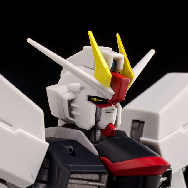 RT_Freedom Gundam-4