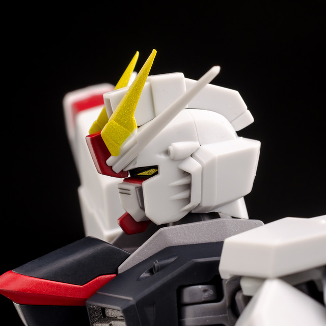 RT_Freedom Gundam-5