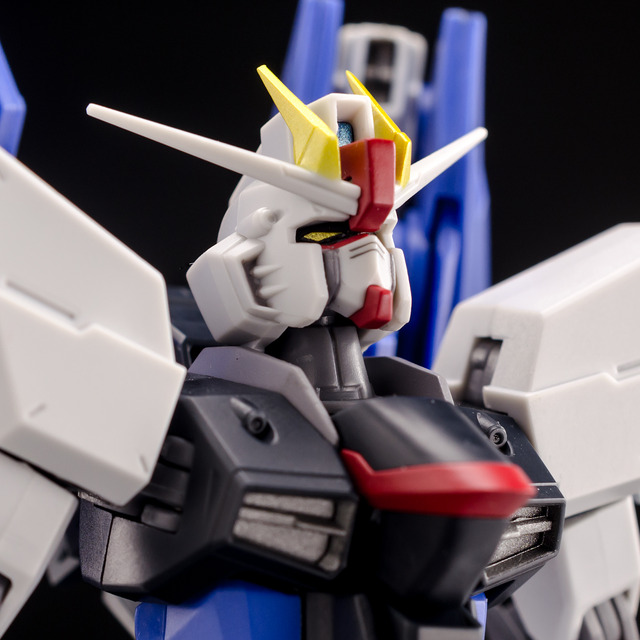 RT_Freedom Gundam-17