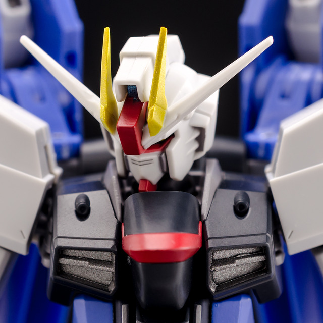RT_Freedom Gundam-18