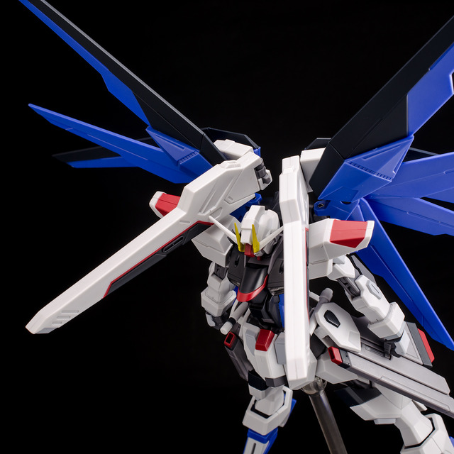RT_Freedom Gundam-43