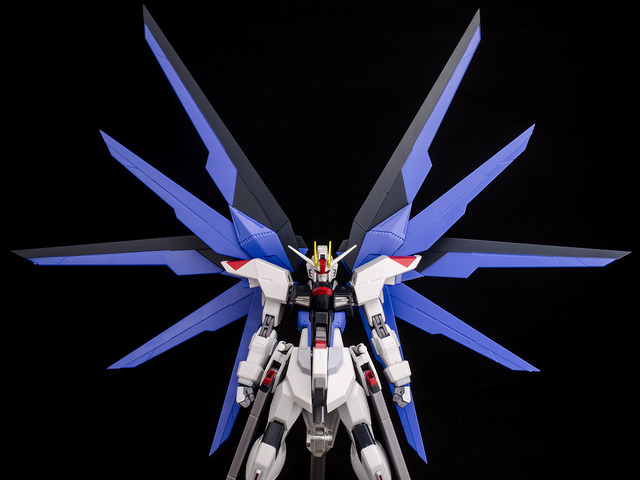RT_Freedom Gundam-34