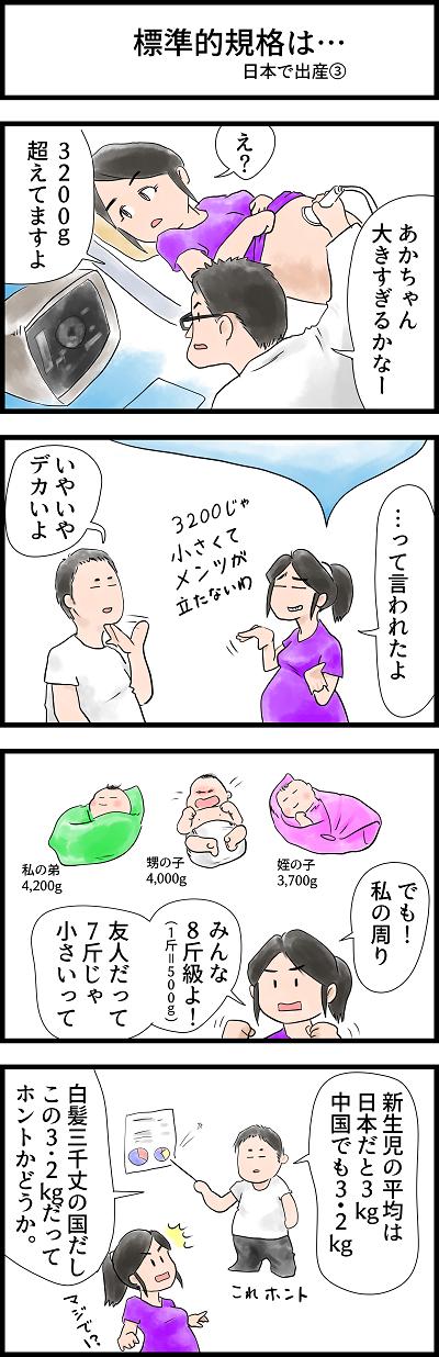 日中合成家族23