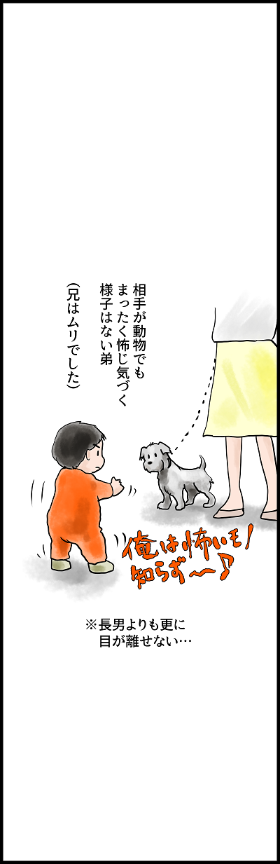 日中合成家族56 dog