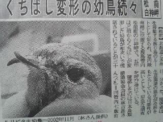 北海道新聞2005年5月1日付け朝刊