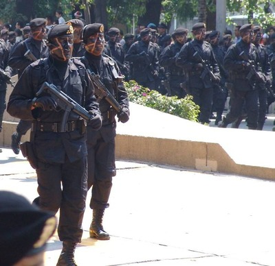 http://lumq.com/wp-content/gallery/mexicanarmyspecialforces/mexican%20army%20special%20forces-06.jpg