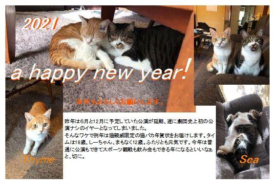 21猫年賀状