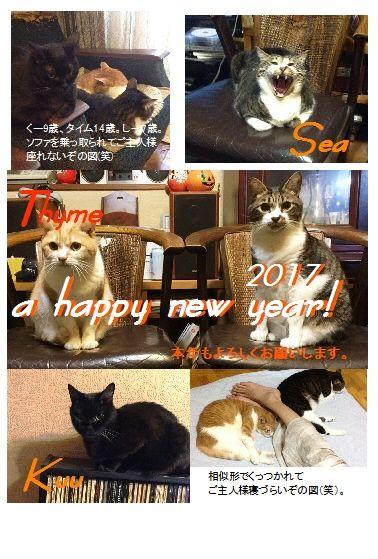 17猫年賀状