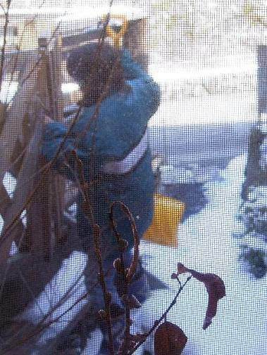 防寒着をしっかり着て除雪作業