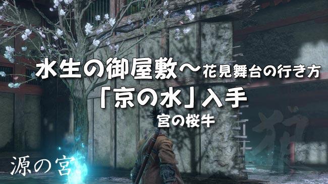 sekiro_story33usi