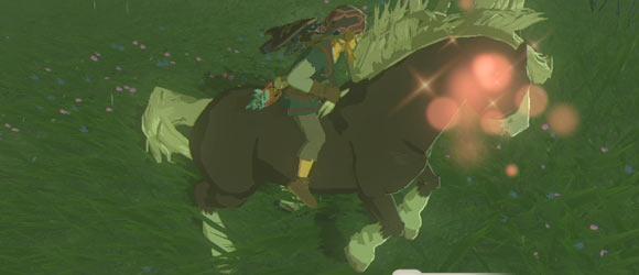 wildhorse3