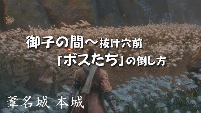sekiro_story37