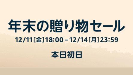 sale20201211-4