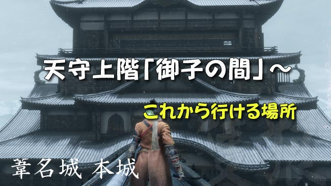sekiro_story13