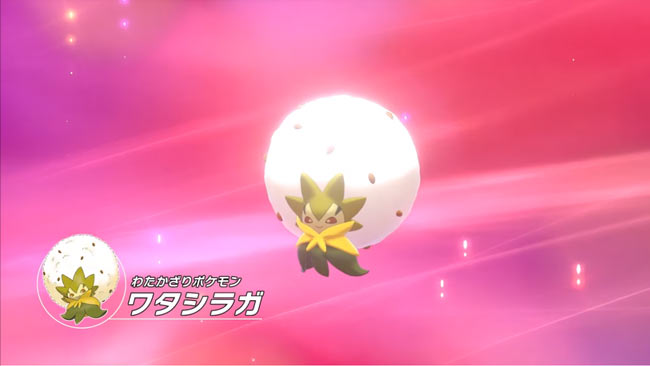 pokemon2019fbattle7