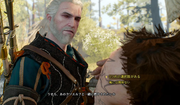 Witcher3_sidequest_flameba2