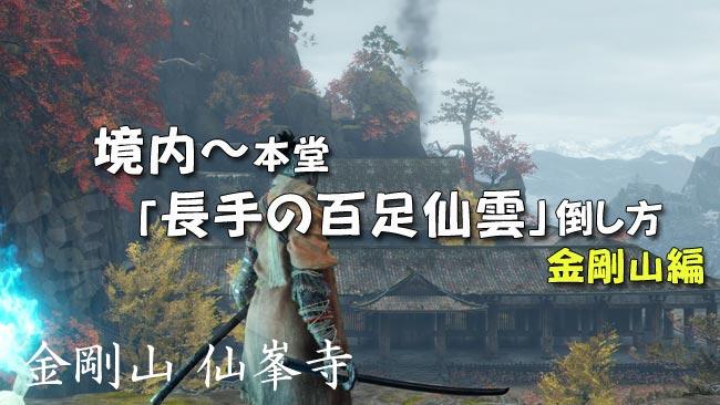 sekiro_story18a