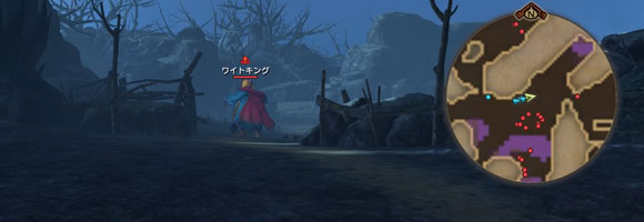 dqh2_quest011