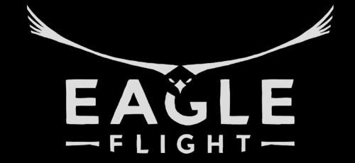eagleflight1013