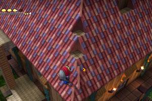 rimu_c_roof3